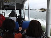 Sawara_duck20150329_24
