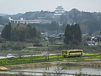 Isumi200_20150401_04