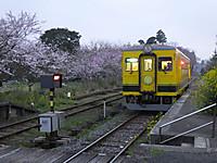 Isumi350_20150401_08