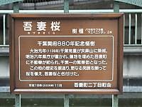 Chiba_mono20150404_03