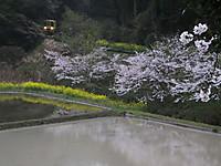 Isumi200_20150405_01