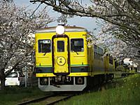 Isumi350_20150410_01