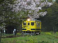 Isumi350_20150413_01