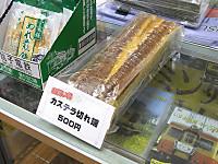 Isumi_rail20150415_09
