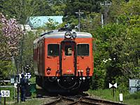 Isumi_kiha52_20150426_26