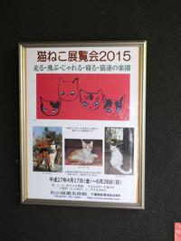 Nekoneko20150429_05