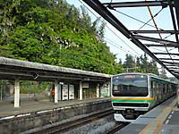 Kamakura20150503_08
