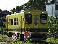 Isumi300_20150601_01