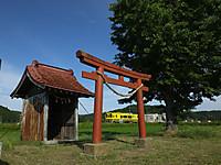 Isumi300_20150605_02