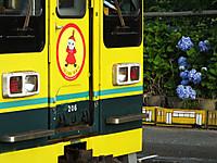 Isumi200_20150610_03
