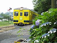 Isumi350_20150616_01