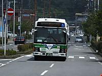 Sakura20150728_01