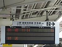 Sakura20150728_02
