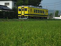 Isumi350_20150801_01