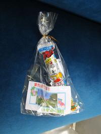 Isumi_rail20150822_07