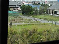 Hokuso20150829_24