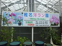 Hokuso20150829_25