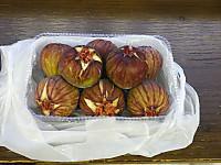Hokuso20150829_53
