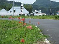 Kuniyosi20150905_11