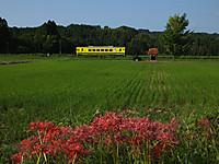 Isumi350_20150922_02