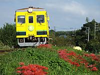 Isumi350_20150922_05