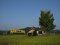 Isumi300_20151022_02