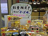 Isumi_ohara20151031_34