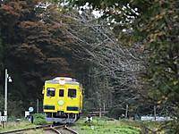 Isumi350_20151112_01
