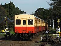 Kominato20151129_06