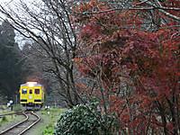 Isumi350_20151215_01