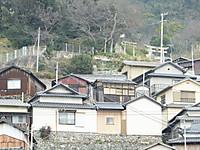 Sikoku20160111_76