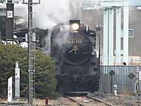 Sawara20160130_34