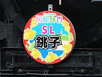 Sawara20160130_38