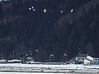 Fukushima20160219_02
