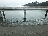 Minamiboso20160306_11