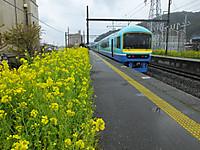 Minamiboso20160306_47