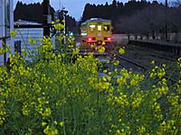 Isumi350_20160311_09