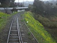 Isumi_rail20160319_07