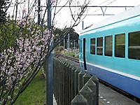 Utibo20160319_14