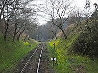 Isumi_rail20160320_06