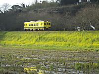 Isumi350_20160322_03