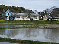Isumi_fusamoto20160326_09
