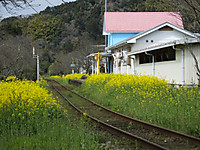 Isumi_fusamoto20160326_10