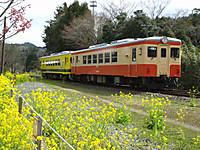 Isumi_nakano20160326_15