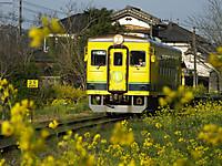 Isumi350_20160331_03