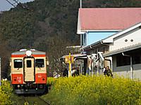 Isumi_kiha20_20160331_05