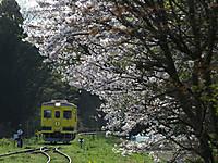 Isumi350_20160408_02