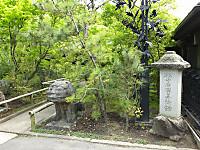 Nekoneko20160424_11