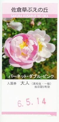 Sakura20160514_06