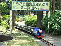 Sakura20160514_18